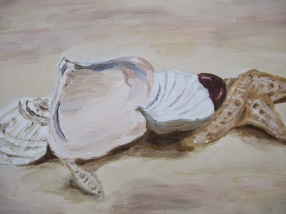 Seashell (2)