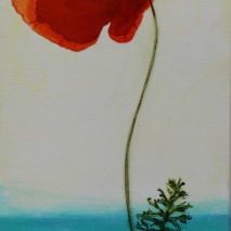 "12""x36"" part of Poppy Quartet - Group"
